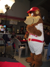 Bob Brown Bear on CBC.JPG