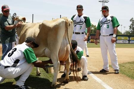 visalia dairy day 1.JPG
