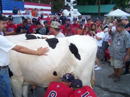 Elizabethton -- Cow Milk.JPG