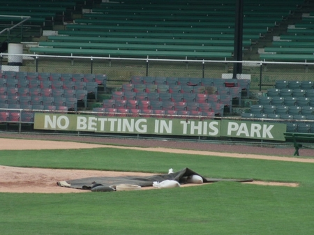 Rickwood_no betting.JPG