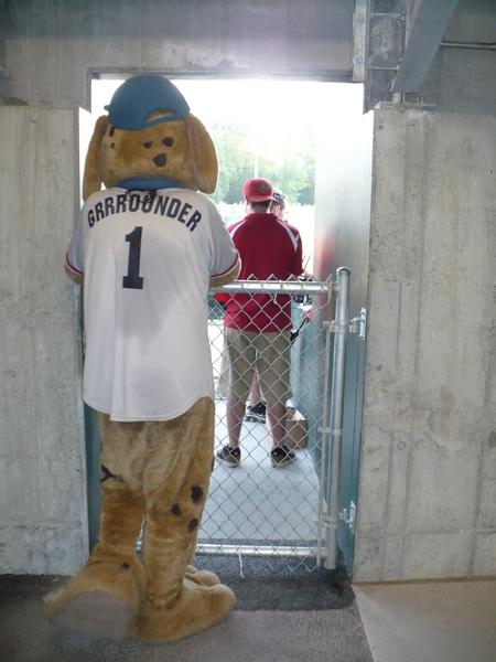 Mascot_grrrounderback.JPG