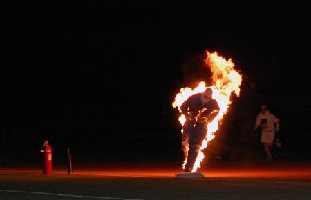 Savannah_Fire_third.jpg
