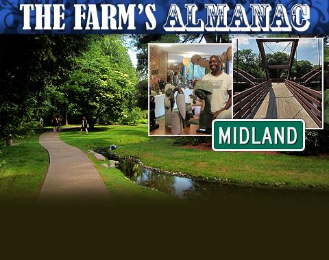 midland farms