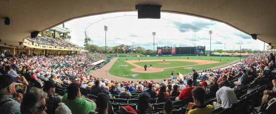 Picture 1 - Champion Field